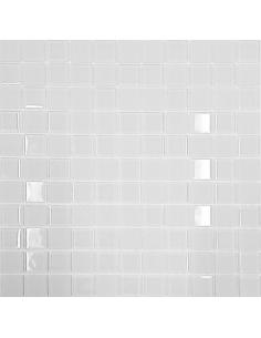 Стеклянная мозаика HP2501