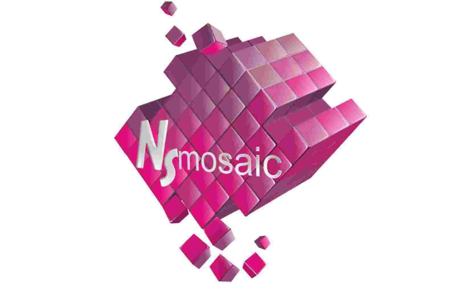 NS Mosaic